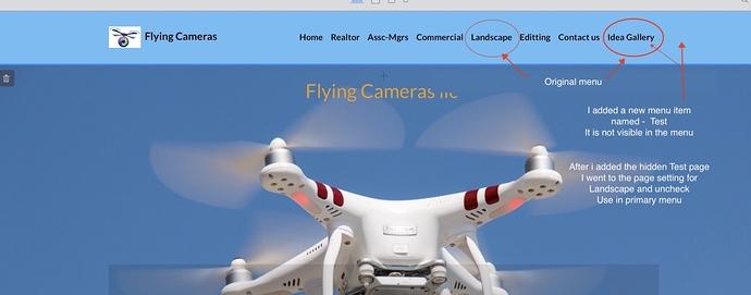 Flying%20cameras%20original%20
