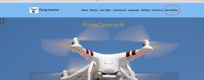 Flying%20cameras%20