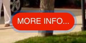 Screenshot 2021-05-13 at 15.31.28